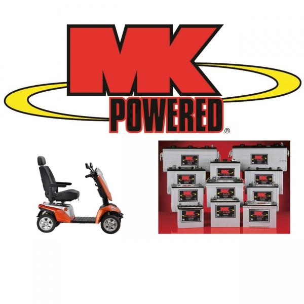 Akku AGM Batterie 12V / 55 Ah für Elektromobile E-Rollstühle